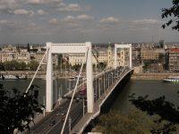 Mossák az Erzsébet hidat